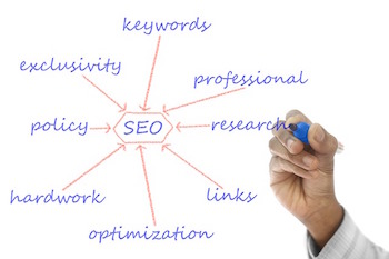 orlando seo expert shares about their day